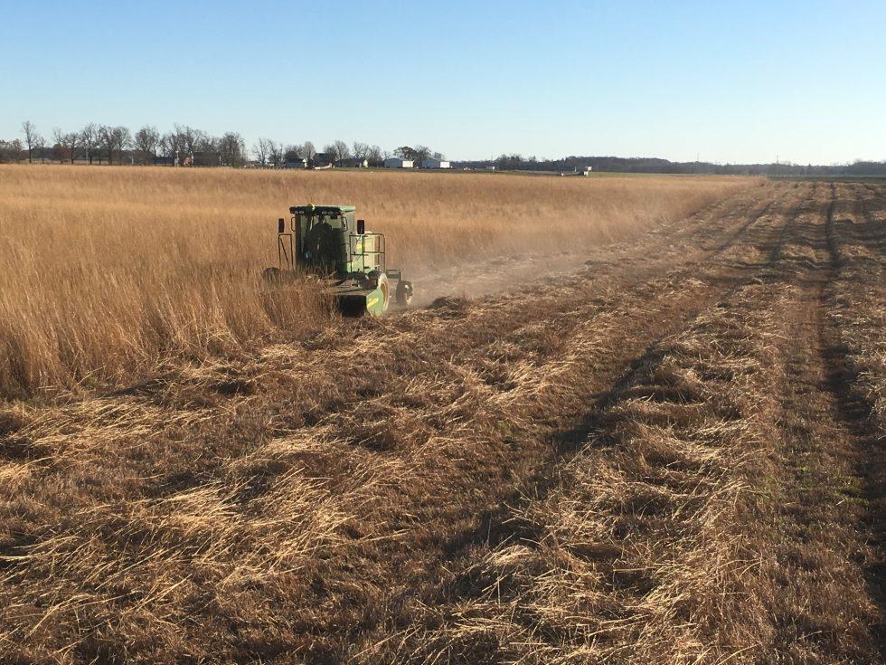 prairie harvest-Wilke