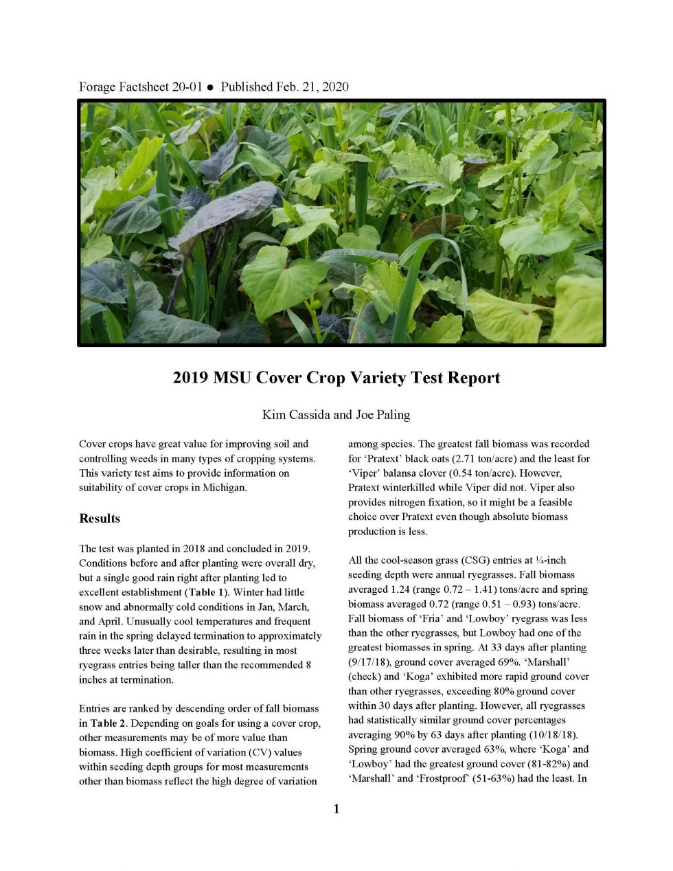 2019 MSU Cover Crop Variety Test